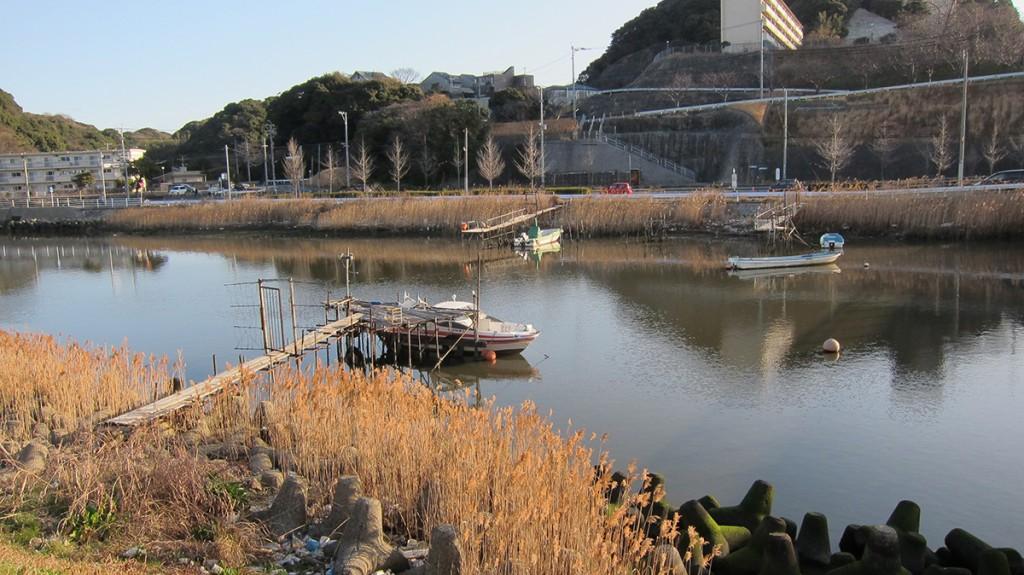 江川台の川を通りながら