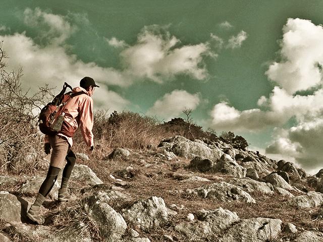 平尾台の貫山登山