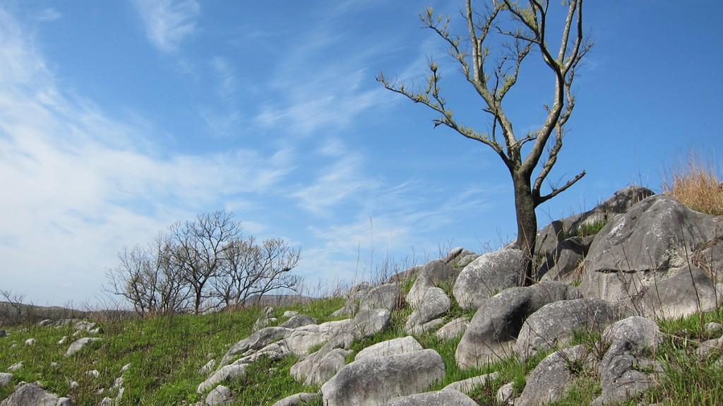 カルスト台地で有名な北九州市小倉南区の「貫山」を登山してきたら予想以上に岩だらけだった